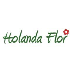 Vivero Holanda Flor